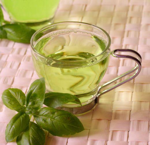 hogyan kell inni koriander teát a fogyáshoz