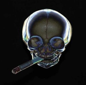 20 éves tapasztalat a dohányzásról való leszokásban)