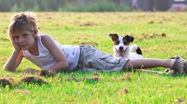 Kerti kutya és gyerekek