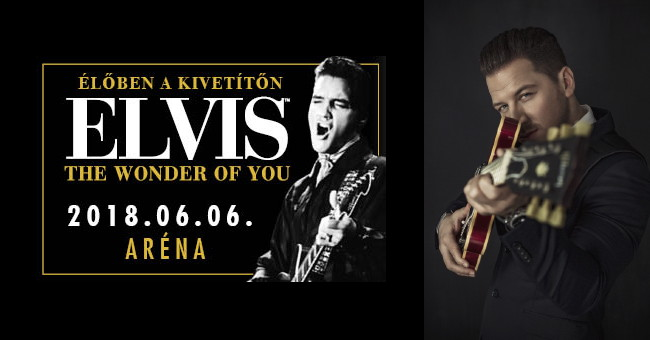 Elvis - The Wonder Of You koncert - Vastag Csaba