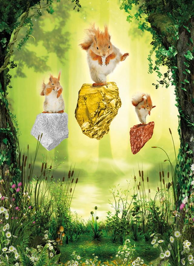 Bűvös erdő - mókusok