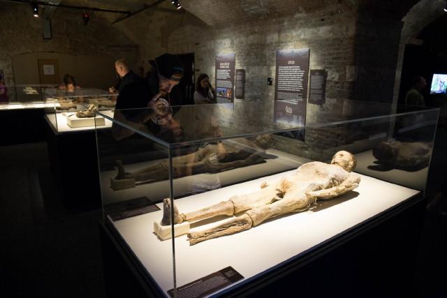 A Világ Múmiái Kiállítás - Ganxsta Zolee
