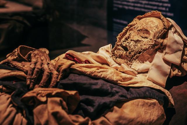 A világ múmiái - Váci múmiák