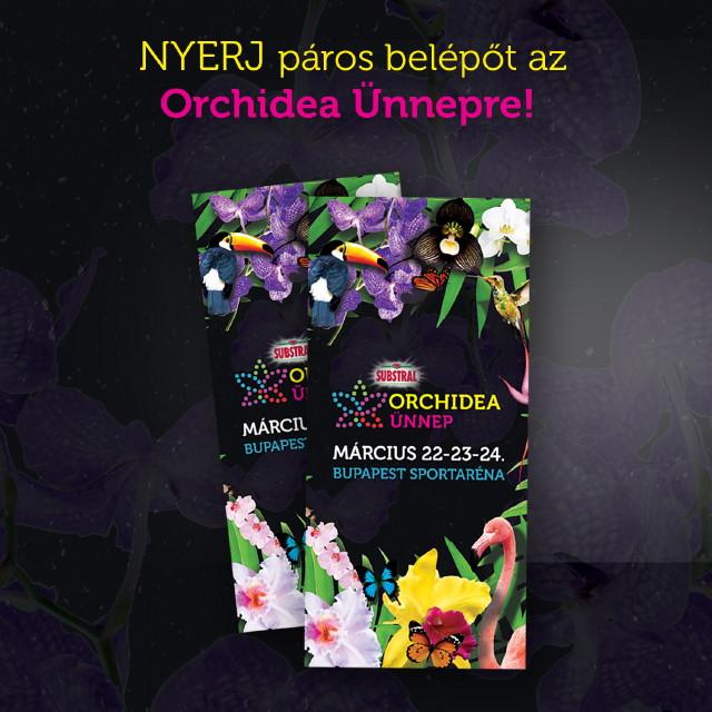 Orchidea Ünnep 2019 - Nyerj páros belépőt!