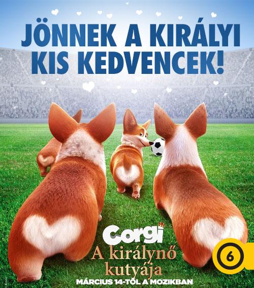 Corgi - A királynő kutyája