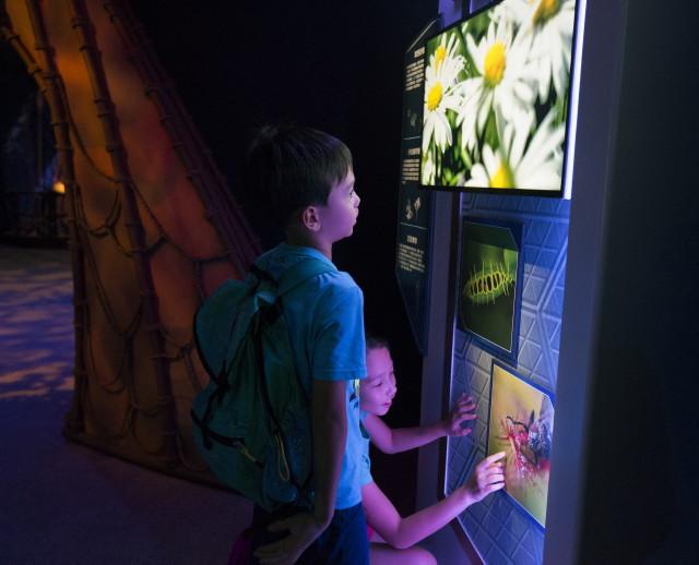 Avatar kiállítás - Pandora élőlényei