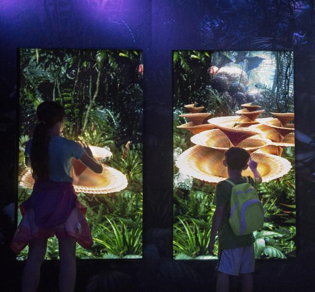 Avatar kiállítás - Pandora növényei