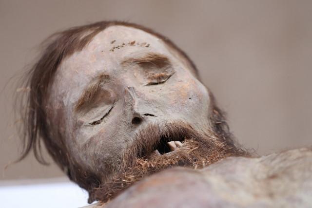 A Világ Múmiái - Erdélyi Múmia