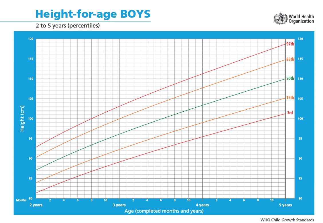 Fiúk növekedése 2-5 év