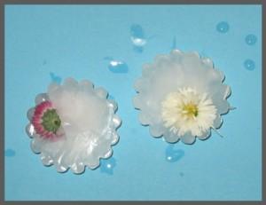 Jégbe fagyott virágok