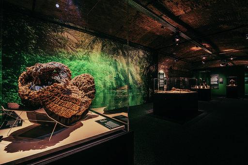 A Világ Múmiái - Kosármúmia