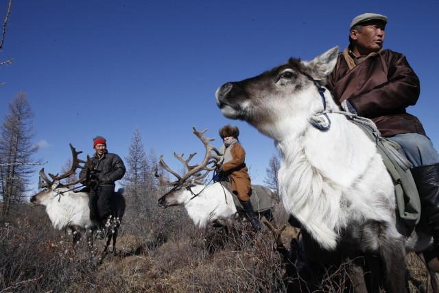 vakcinaszállítás Mongóliában