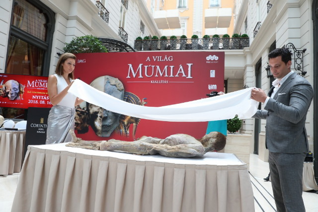 A Világ Múmiái - Múmia leleplezés
