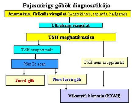 pajzsmirigy_gob_diagnosztika