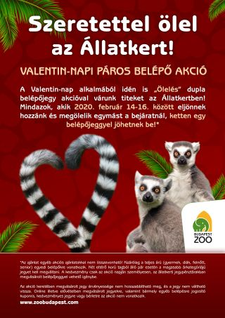 Valentin-napi páros kedvezmény
