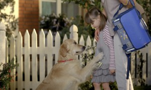 Kutya + kislány =piszkos ruha